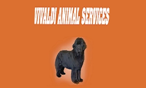 Vivaldi Animal Services